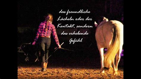 freundschaft verzaubert nacht der pferde