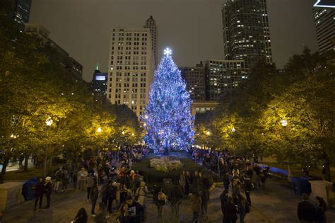 chicago christmas tree lot the puzzle of the tree how did a common conifer come to symbolize the season