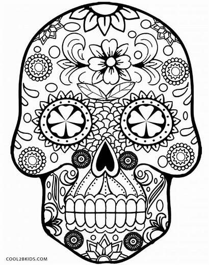 Coloring Skull Sugar Pages Grown Ups