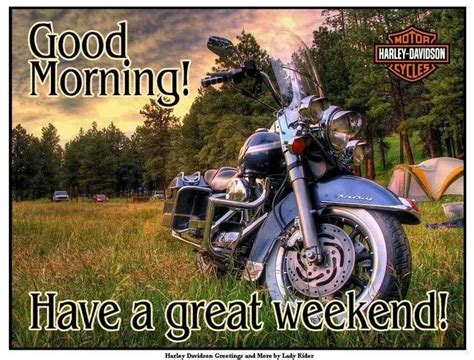 By now you already know that, whatever you are looking for, you're sure to find it on aliexpress. 17 Best images about Harley Weekend on Pinterest   Its the weekend, This weekend and Peeps