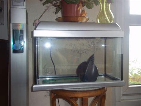 aquarium d occasion a vendre 28 images aquarium eau de mer occasion aquarium 600 litres d