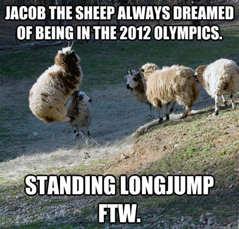 Sheep Memes - creepy sheep meme www imgkid com the image kid has it