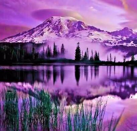 purple mountains mountains nature background