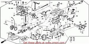 89 Honda Accord Engine Diagram  89  Free Engine Image For User Manual Download