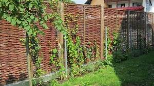 Welche Pflanzen Eignen Sich Als Sichtschutz : welche arten der grundst cksbegrenzung gibt es ~ Sanjose-hotels-ca.com Haus und Dekorationen