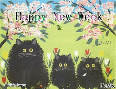 Lewis Maud Week Happy Cat Cats Maudie