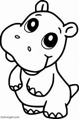 Hippo Coloringall Manatee Babies sketch template