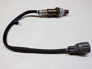 2001 Toyota Echo Oxygen Sensor  Electrical  Make  Repair