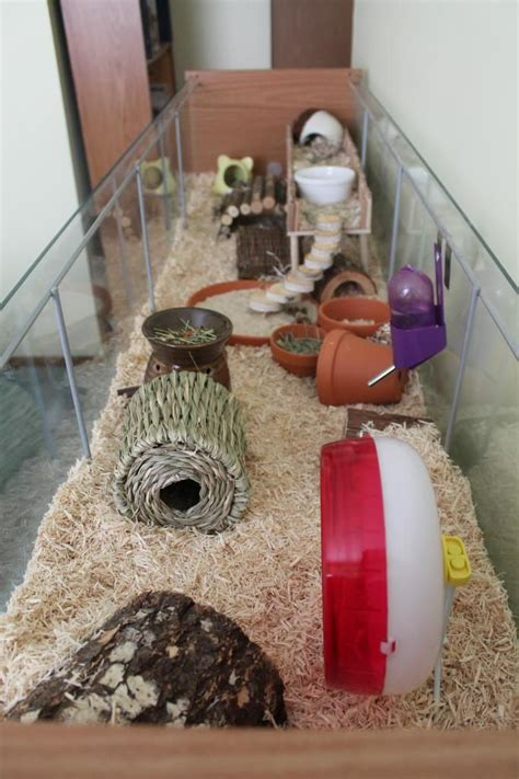 10 Best Images About Hamster Cages On Pinterest
