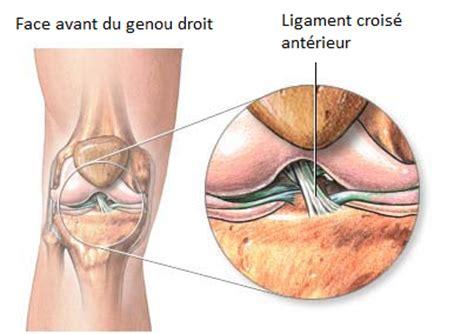 douleur a l interieur du genou comment avoir les ligaments croises