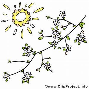 Bilder Blumen Kostenlos Downloaden : fruehling bild kostenlos baumzweige mit blumen ~ Frokenaadalensverden.com Haus und Dekorationen
