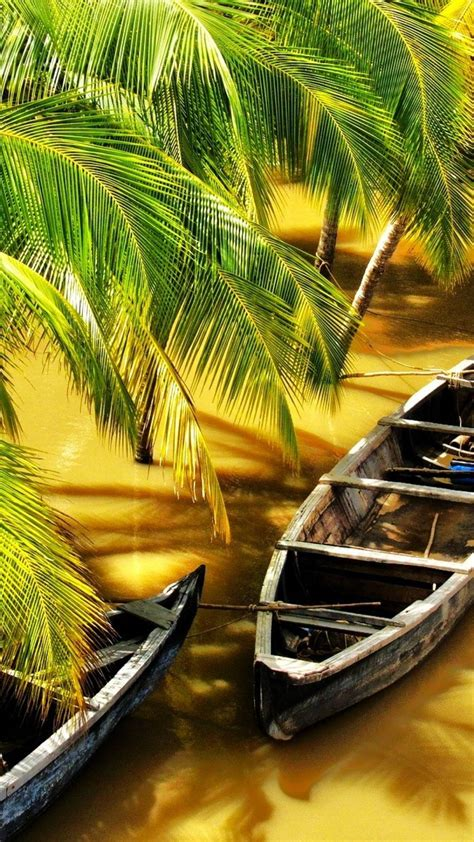 kerala boats house wallpaper