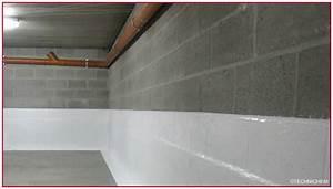 Etancheite Mur Exterieur Sous Sol : peinture cave et sous sol peinture cave et sous sol blanc 2 5l castorama peinture sp cial cave ~ Melissatoandfro.com Idées de Décoration