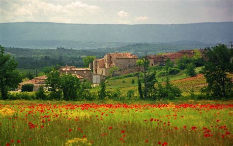 french countryside  provence