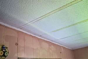 Mobile Home Ceiling Panels Repair Design Ideas - Kaf