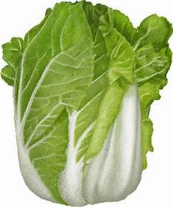 Lettuce clip art clipart free clip art fruits - Clipartix