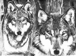 Wolf Pack - OnlyPencil.com - Wildlife Pencil Drawings by ...