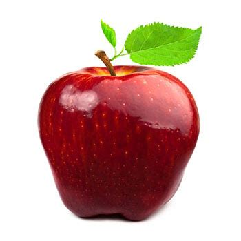 Red Delicious  East Coast Impex  Export Management And