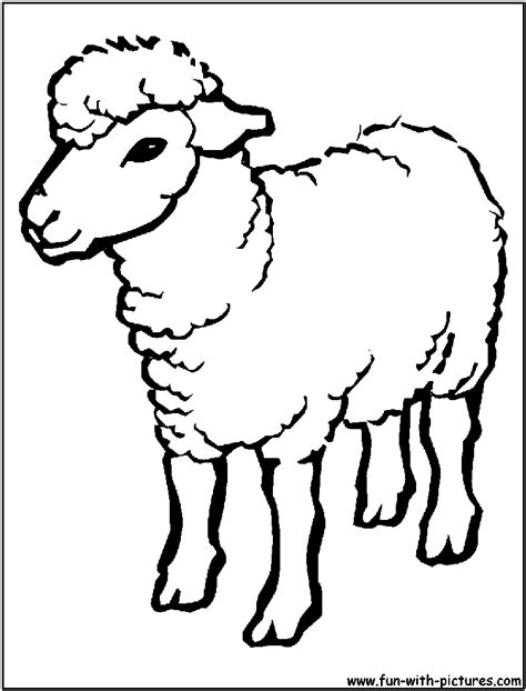 Sheep Outline Drawing Coloring Page Cartoon Images