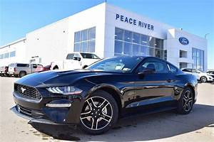 New Ford Mustang for Sale - CarGurus