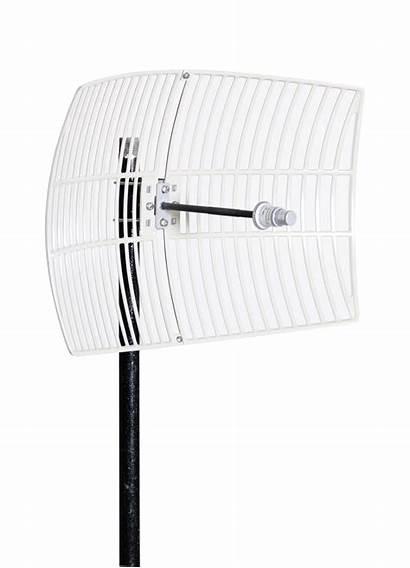 Wifi Antennas Grid Antenna Types Different Wi