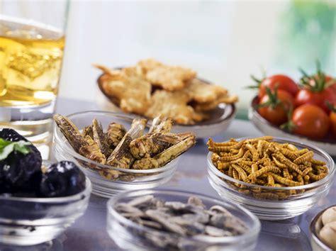 insectes cuisine comment manger des insectes 8 idées pour vous y mettre