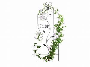 Support Plantes Grimpantes : support pour plantes grimpantes lidl luxembourg ~ Dode.kayakingforconservation.com Idées de Décoration
