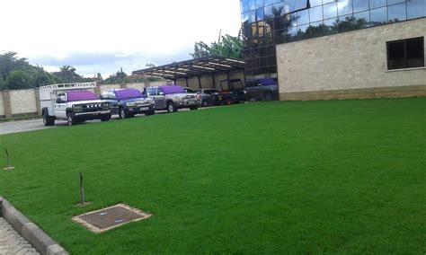 Lawn Grass,pest Control In Kenya
