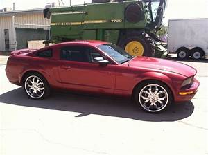 2005 Ford Mustang V6 Premium Coupe   Alliance Worldwide Distributing