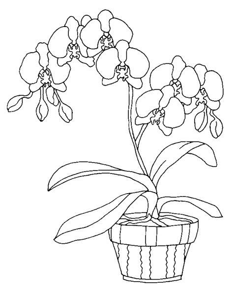 dessin pot de fleur