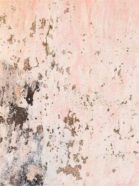 toast cereal goa        pink texture rose