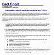 Fact Sheet Template – 12+ Download Documents in PDF , Word