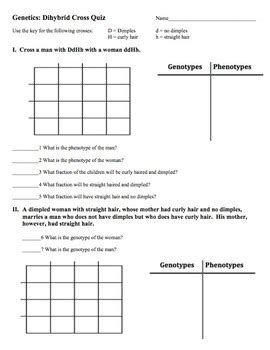 genetics dihybrid quiz by amy brown science tpt