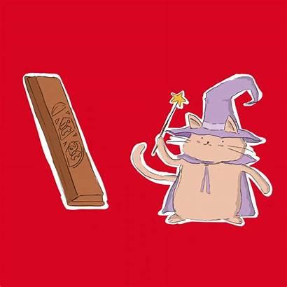 Fear Risk Taking Take Hoppip Kitkat