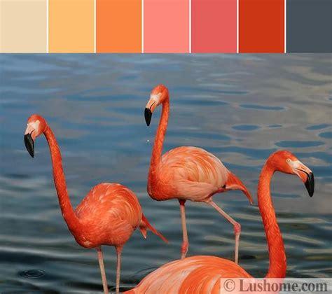 beautiful orange color schemes  spice   interior