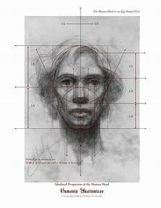 drawing the human head - Google Search | Head | Pinterest ...