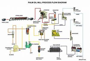 Palm Oil Mill Processing Machines