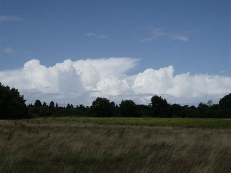 wild treasures types  clouds  level cloud types