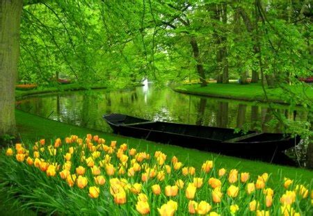 green morning rivers nature background wallpapers