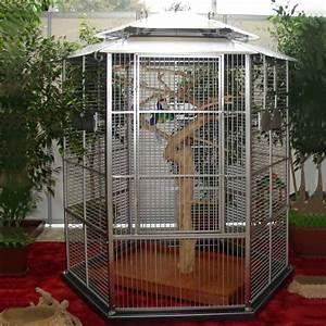 Cage A Perroquet : cage oiseaux ~ Teatrodelosmanantiales.com Idées de Décoration