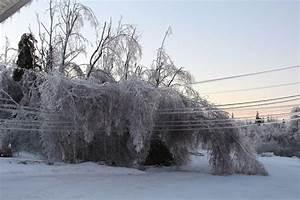 Ice Storm Paralyses New Brunswick  Canada