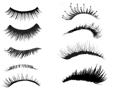eyelash template with lashes clip vector sketch coloring page