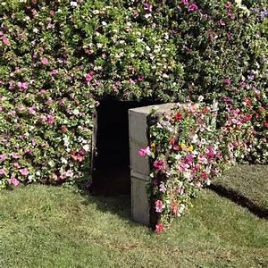 Ssst 14 Amazing Secret Passages Ideas Small House Decor