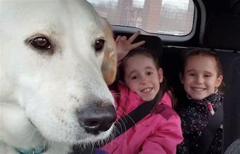 dzivei.eu - VIDEO: Aizkustinošs stāsts, kā divas māsiņas ...