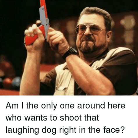 Meme Am I The Only One - am i the only one around here who wants to shoot that laughing dog right in the face meme on