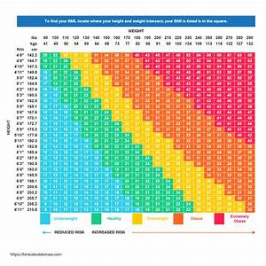 Free Bmi Calculator