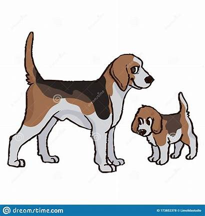Dog Clipart Puppy Hunting Kennel Cartoon Foxhound