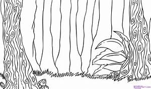 How to Draw a Forest, Step by Step, Landscapes, Landmarks ...