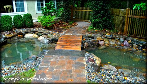 goldfish pond  bridge designed  installed  full