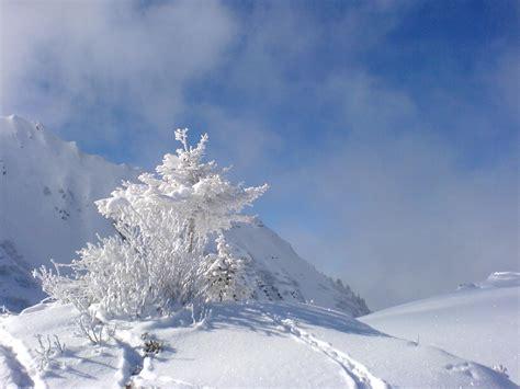 photo neige paysage les  belles  par bonjour nature